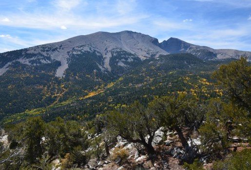Mather Overlook on Wheeler Peak Scenic Drive in Great Basin National Park, Nevada