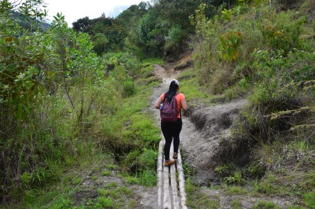 The trail to Alto de San Andrés at Tierradentro, Cauca, Colombia