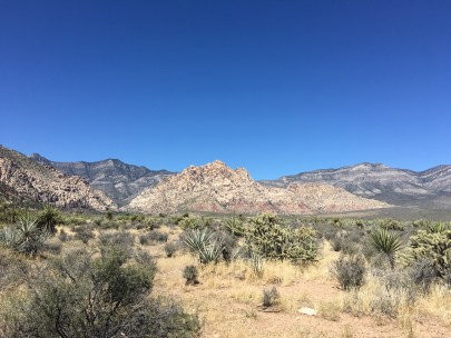 Willow Springs Loop at Red Rock Canyon National Conservation Area in Nevada