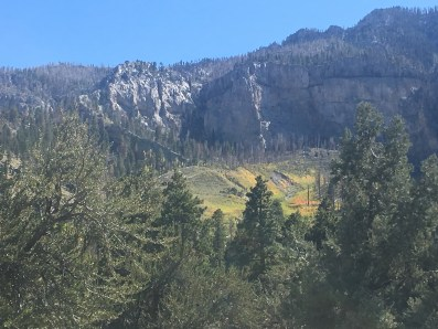 Cathedral Rock Picnic Area in Mount Charleston, Nevada