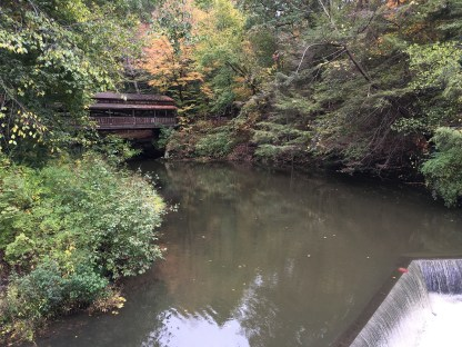 View of the Covered Bridge from Lanterman's Mill at Mill Creek Park in Youngstown, Ohio