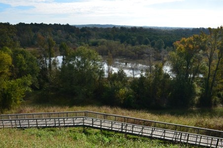 Wetlands from the Great Temple Mound at Ocmulgee National Monument in Macon, Georgia