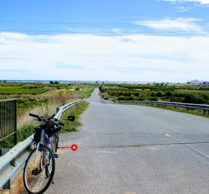 On a section of the route through l'Horta Nord, with the sea in the background.