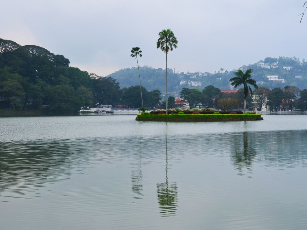 Kandy Lake also known as Kiri Muhuda or the Sea of Milk, is an artificial lake in the heart of the hill city of Kandy, was built in 1807 by King Sri Wickrama Rajasinghe close to the Temple of the Tooth