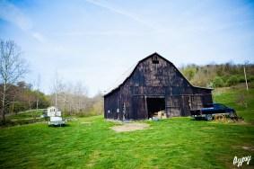 Annie's Farm 070 copy
