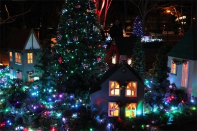 ホワイトクリスマスメイン会場 「矢ケ崎公園」