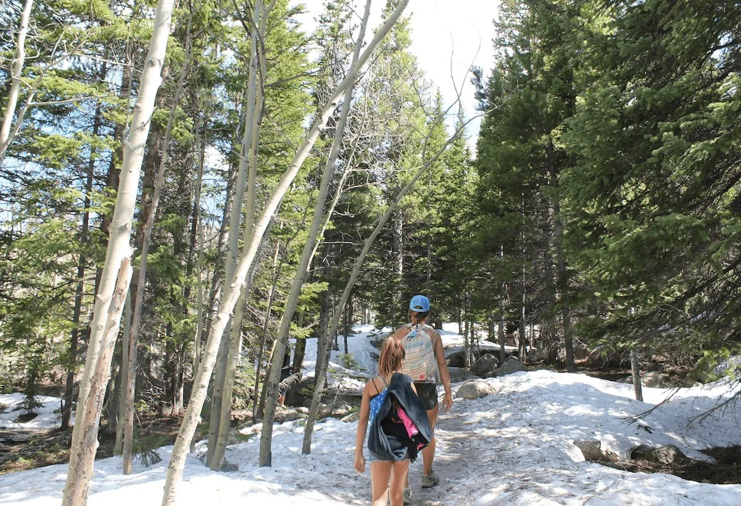hiking alberta falls rocky mountain national park