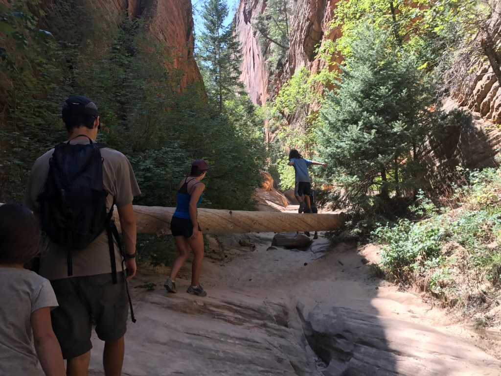 Zion National Park, Southwest Canyons Family Adventure Road Trip