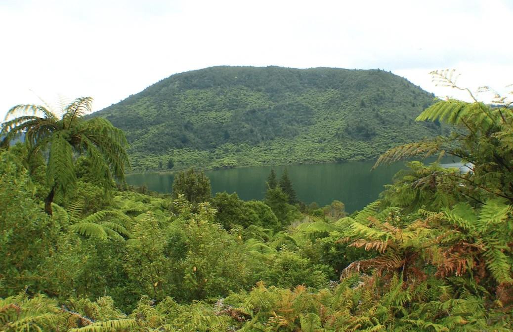 Blue and Green Lakes, Rotorua, 3 week New Zealand Road Trip Itinerary