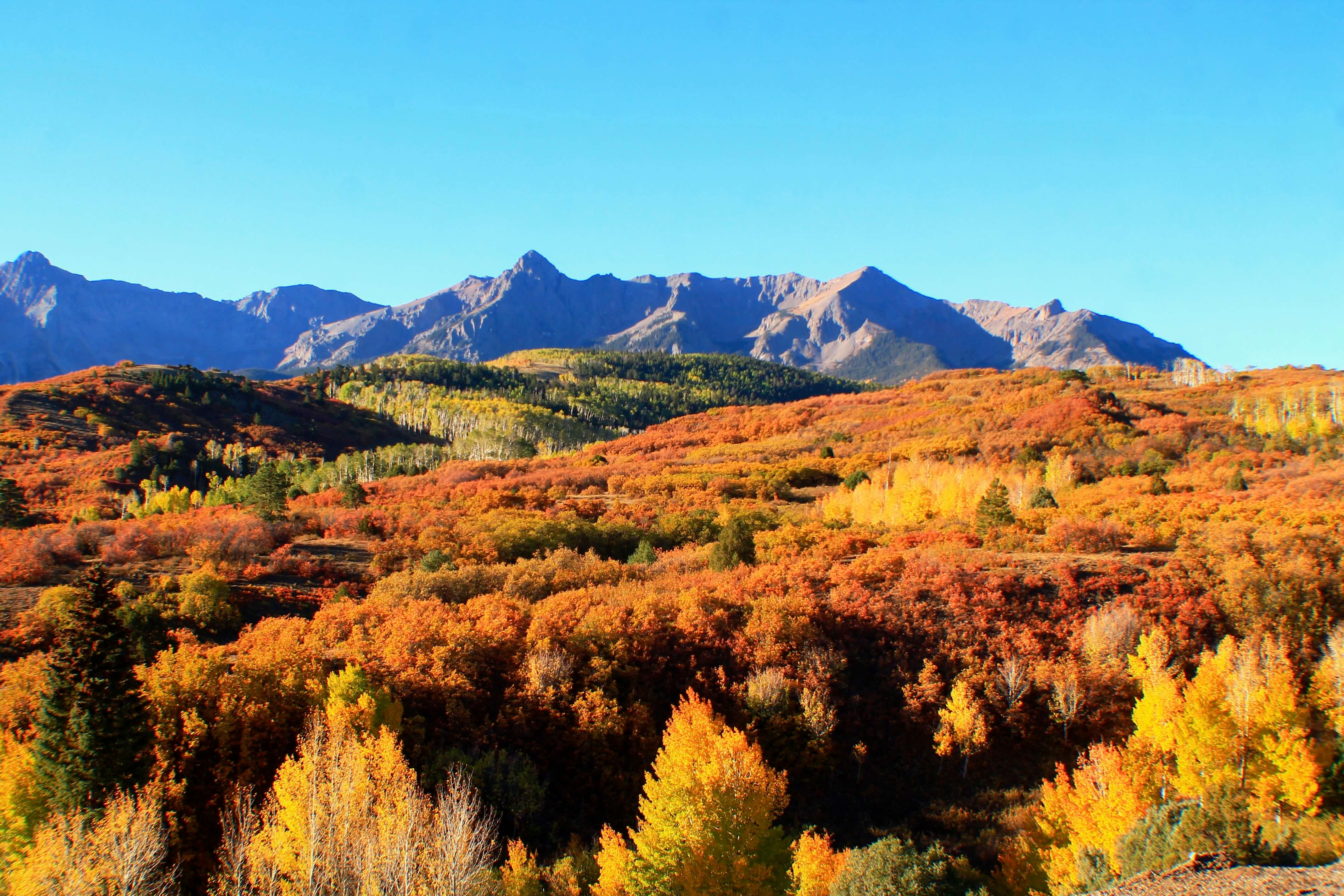 Dallas Divide, things to do in Telluride in October