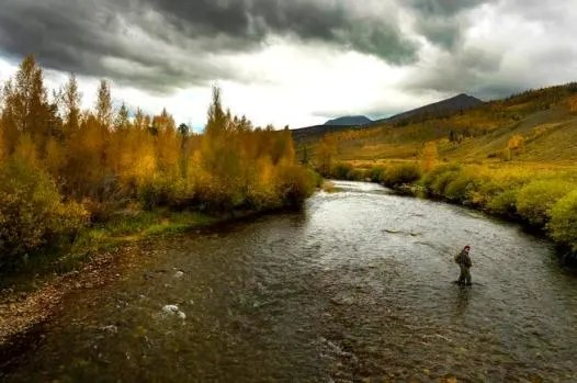 Fishing on the Blue River, Silverthorne Things to Do