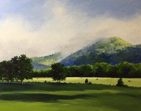 Morning Sun On Hay Field, Nimrod, Virginia, No. 2