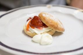 Strawberry Shortcake - Westerdam Cruise