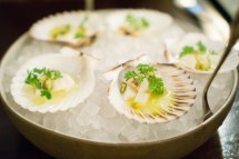 bay scallops - NoMad