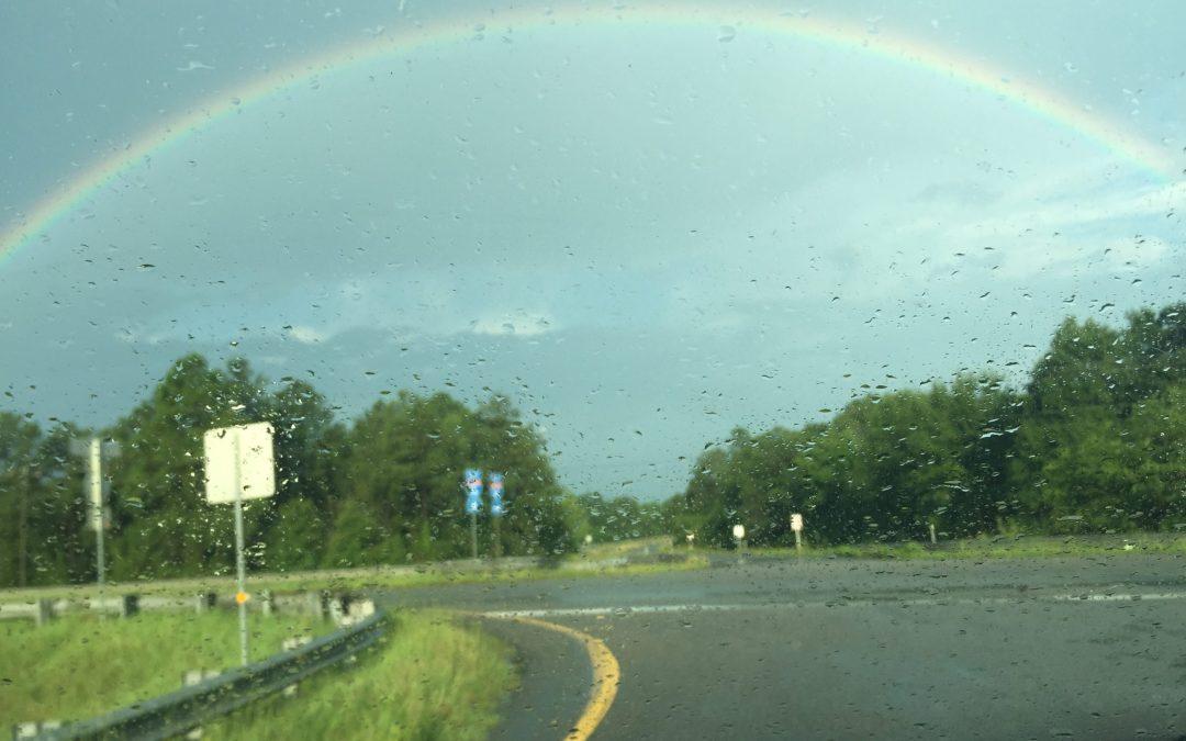 Rainbows Through the Rain