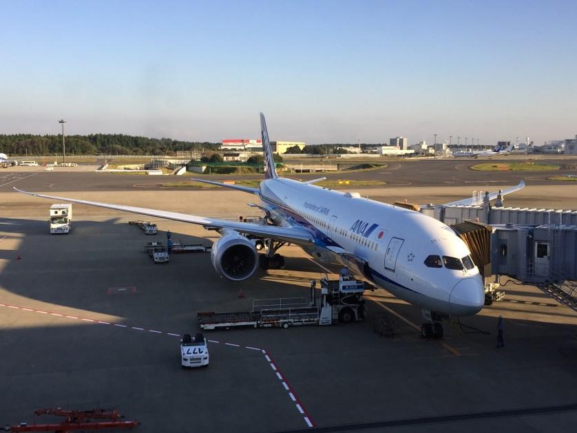 ANA Dreamliner in Narita