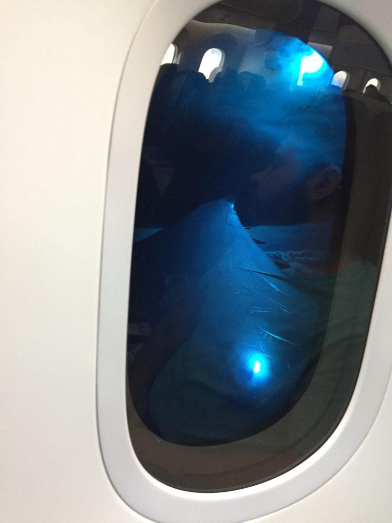 ANA Dreamliner Window Dimming