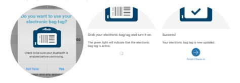Electronic Bag Tag Instructions