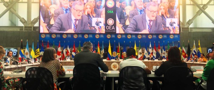 Participation at the Organization of American States General Assembly
