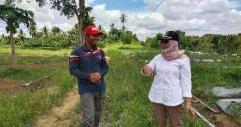 Urai Masalah Petani, Sujiati Konsen Soal Pengapuran dan Peningkatan Kapasitas Penyuluhan