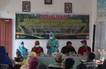 BPTP Kaltim Kembangkan Varietas Padi Inpari Nutri Zinc di Kukar
