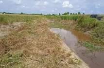 Lahan Pertanian Dibayangi Banjir, Desa Sebakung Perlu Pintu Air
