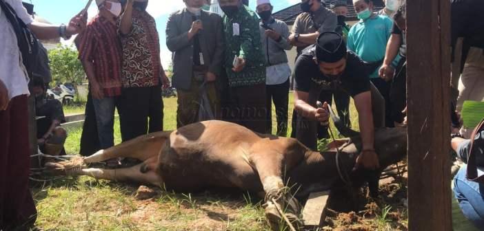 Jelang Iduladha, Pengurus Masjid di Kubar Dibekali Pelatihan Penyembelihan Hewan Kurban