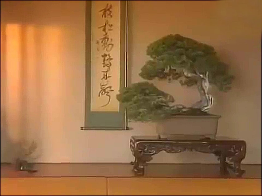 bonsai kakejiku