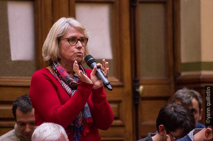 Frédérique Denis, Conseillère départementale de Seine-Saint-Denis