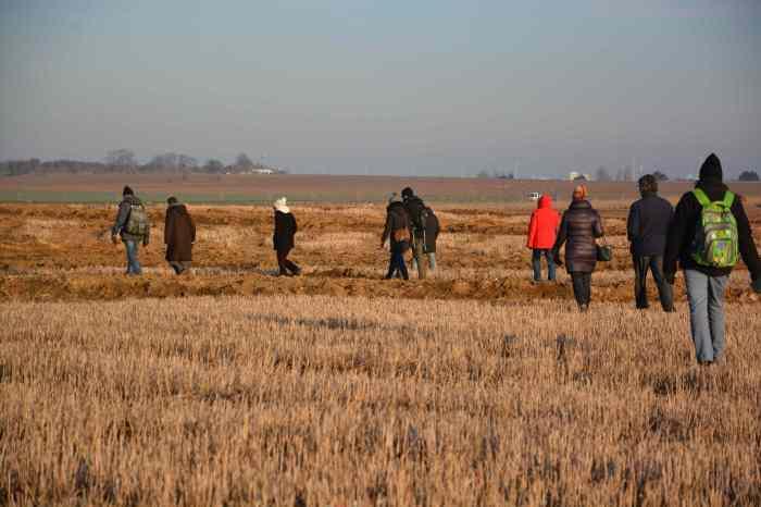 De belles terres aux blés coupés