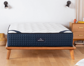 dreamcloud pillows 2021 non biased