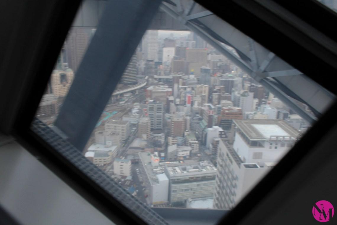 Japan by Noni May Osaka day 1 Umeda Sky Buildinh (1 of 20)