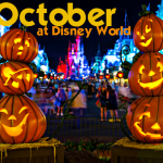 What to Pack for Walt Disney World