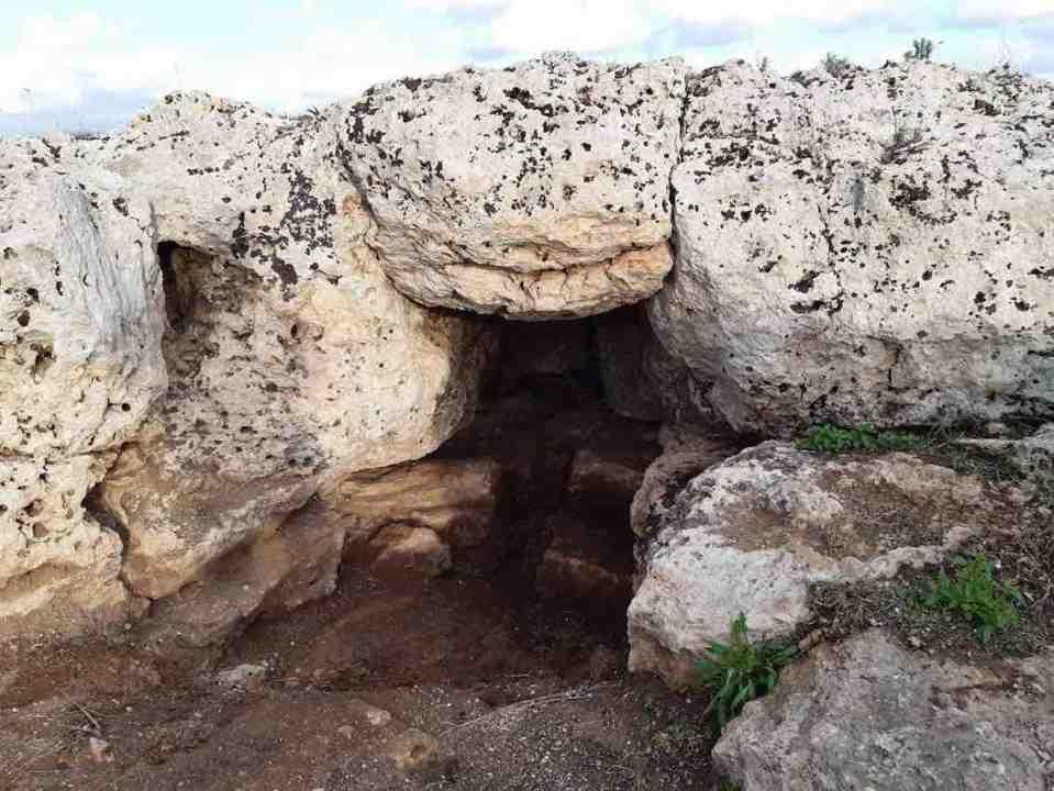 Puglia, scoperto un sito archeologico in una cantinaPuglia, scoperto un sito archeologico in una cantina