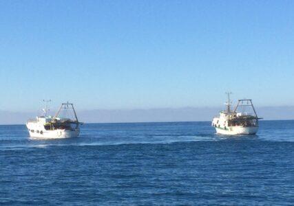 Pesca e tecnologia, in Basilicata il progetto del Tablet su ogni barca