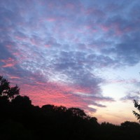 GIALLO Toscana...ultimo spuntino al tramonto prima dell'inverno & le mie marmellate speziate