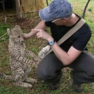 Incontro con cucciolo di leopardo