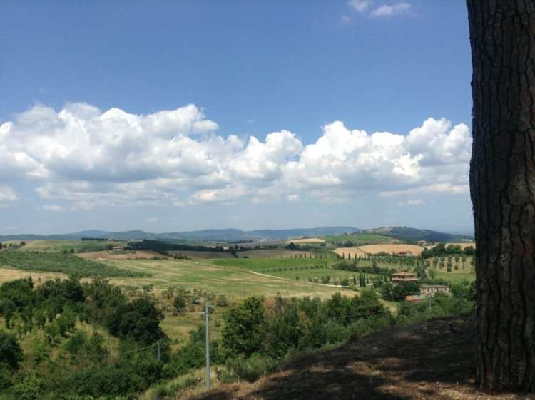 Collelungo, Umbria - Panorama