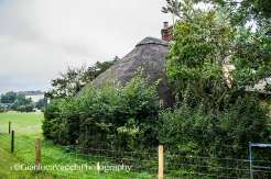 Thatched roofed cottage - Salisbury, Inghilterra (Regno Unito)