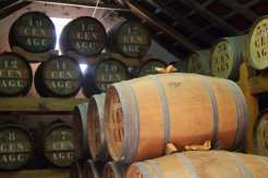 Rum - Madeira, Portogallo