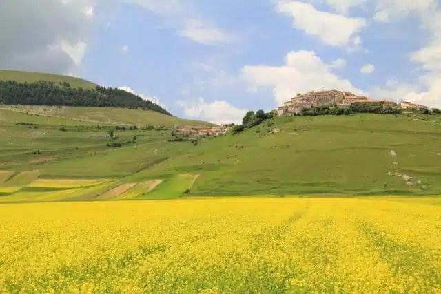 Piana di Castelluccio - Umbria, Italia