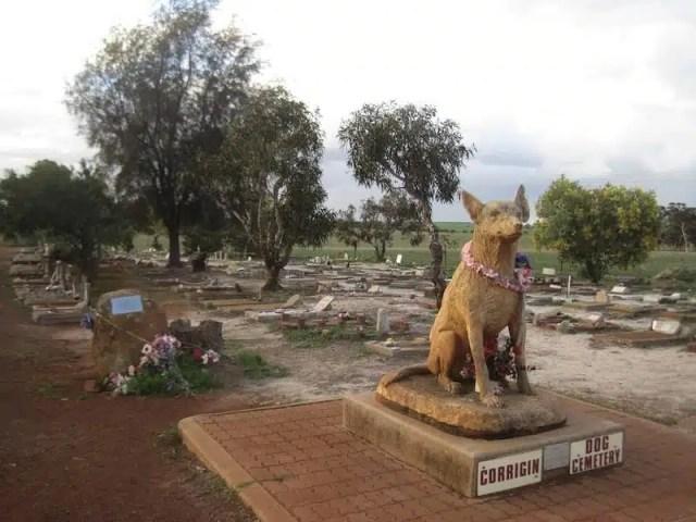Dog Cimitery - Corrigin, Australia