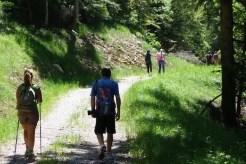 #paganelladaurlo Trentino, Italy