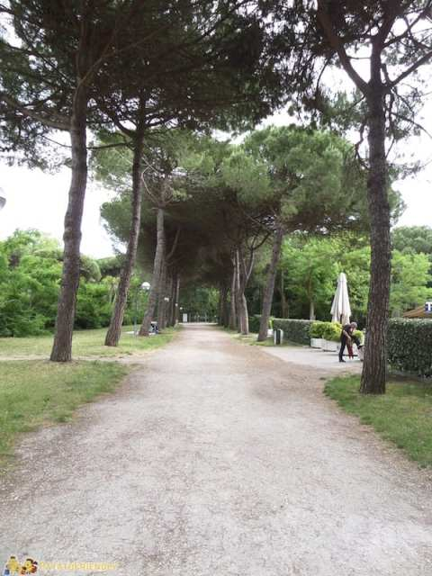 Parco Naturale di Cervia, Italia