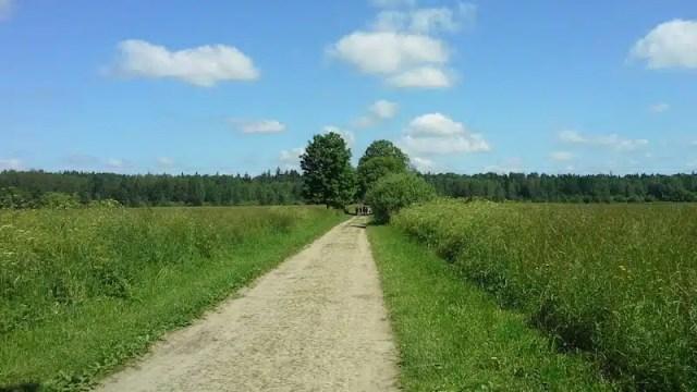 Bialowieza, Polonia