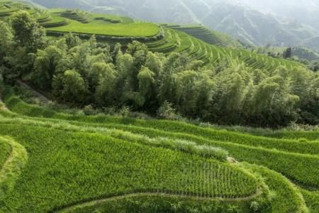 7MML Around The World - Longsheng, Cina
