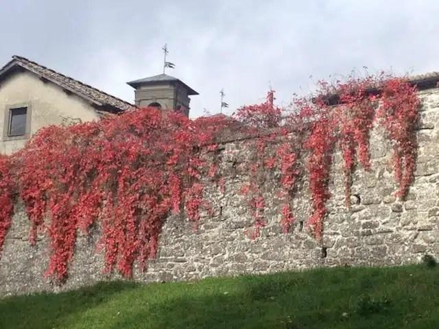 Eremo di Camaldoli - Appennino romagnolo, Italia
