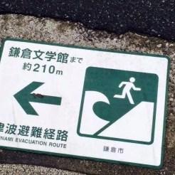 Pericoli naturali - Giappone