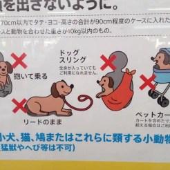 Raccomandazioni e consigli - Giappone