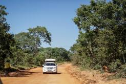 7MML - Zambia